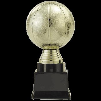 Trofee Sverre basketbal goud