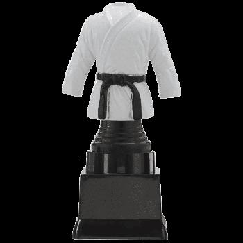 Trofee Sverre judo