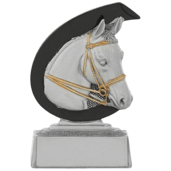 Trofee Liz paardensport